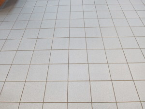 VCA Tile&Grout 057